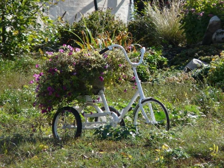 Клумба из старого велосипеда