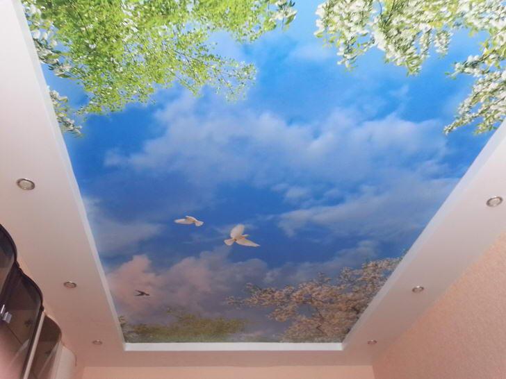 Натяжные потолки с фотопечатью уместны в дизайне любой комнаты. Гармоничная картина голубого неба с белыми голубями будет смотреться особенно привлекательно в гостевой комнате.