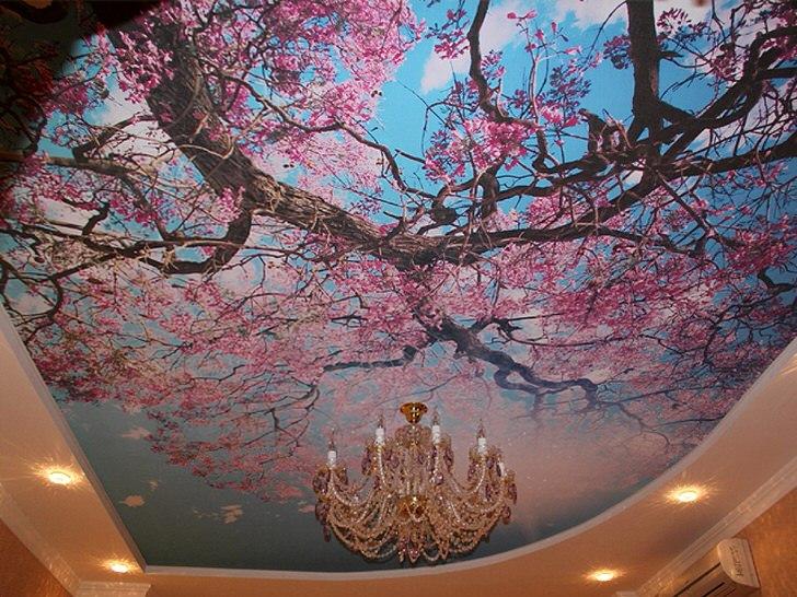 Цветущая сакура часто используется современными дизайнерами для оформления потолков. Актуальное решение для оформления гостевой комнаты или холла.