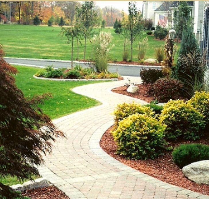 Фото дачного дома и сада