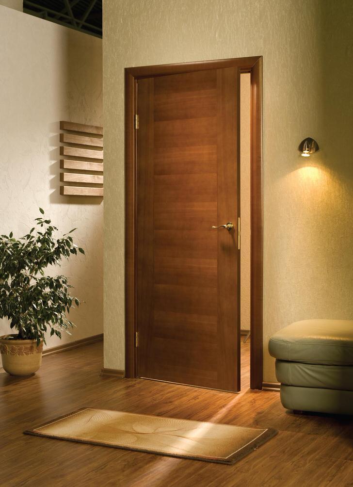 Двери в стиле модерн благодаря своему скромному, лаконичному дизайну будут гармонично смотреться в любом интерьере.