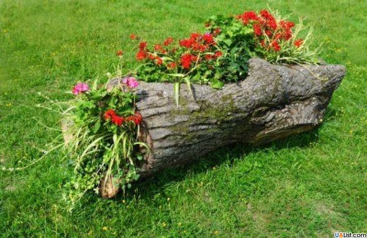 Из части срубленного дерева дачник сделал шикарную клумбу для своего двора. Для создания подобной композиции потребуется минимум умений и материальных затрат.