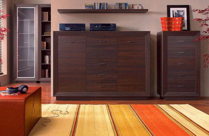 Комплект мебели для гостиной цвета венге оснащен множество вместительных ящиков. Минимум мебели делают пространство не загроможденным.