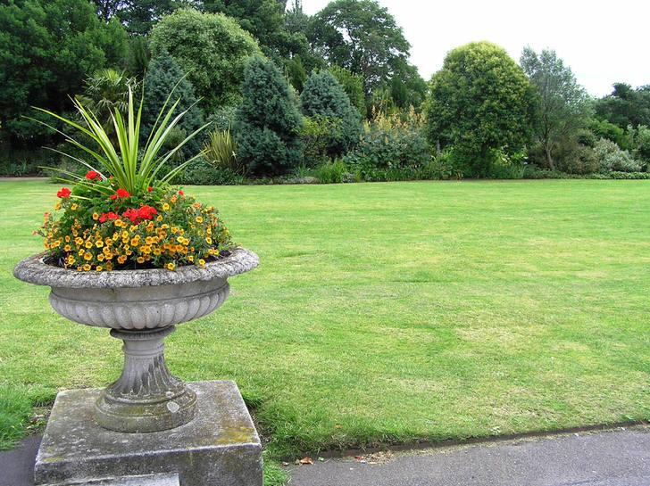 Зеленый английский газон