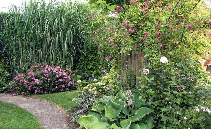 Высокая нестриженая трава, цветы, вьющиеся по забору, - все, что нужно для оформления ландшафта в деревенском стиле.