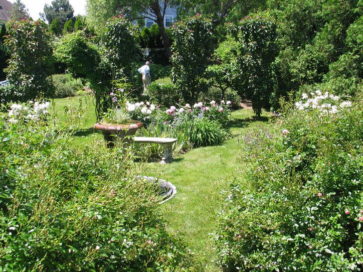 Густая зеленая растительность, живые цветы и небольшая лавочка, как место для уединения, - все, что нужно для оформления сада в средиземноморском стиле.