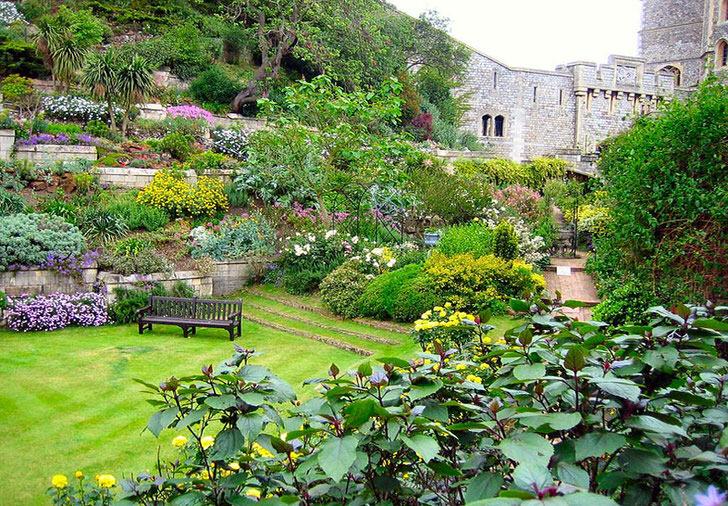 Для оформления ландшафта в средиземноморском стиле использовался английский газон, который вместе с изобилием цветов делает сад насыщенным и красочным.