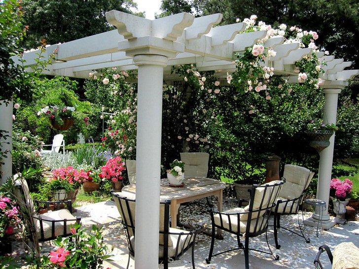Плетистые розы украшают перголу в средиземноморском стиле.