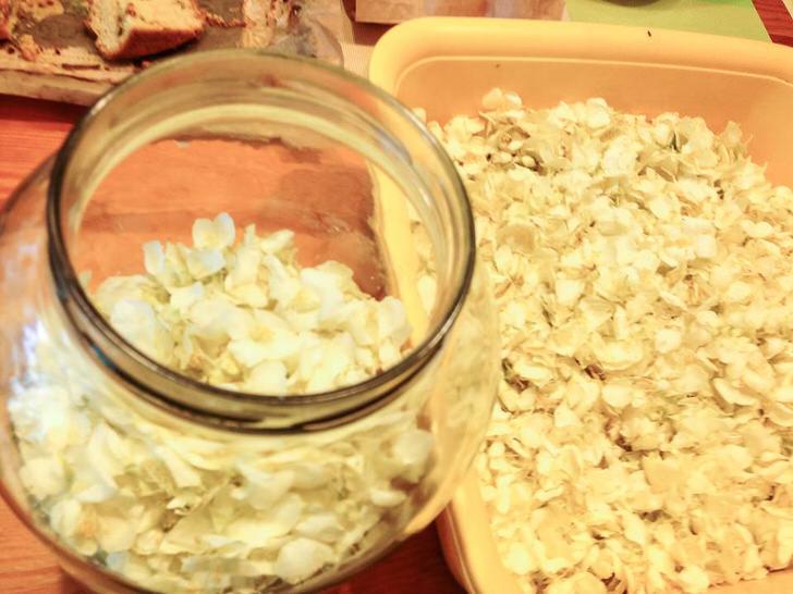 Для приготовления жасминового сиропа собираем только белые лепестки и не давая им подсохнуть складываем слоями пересыпая сахаром.