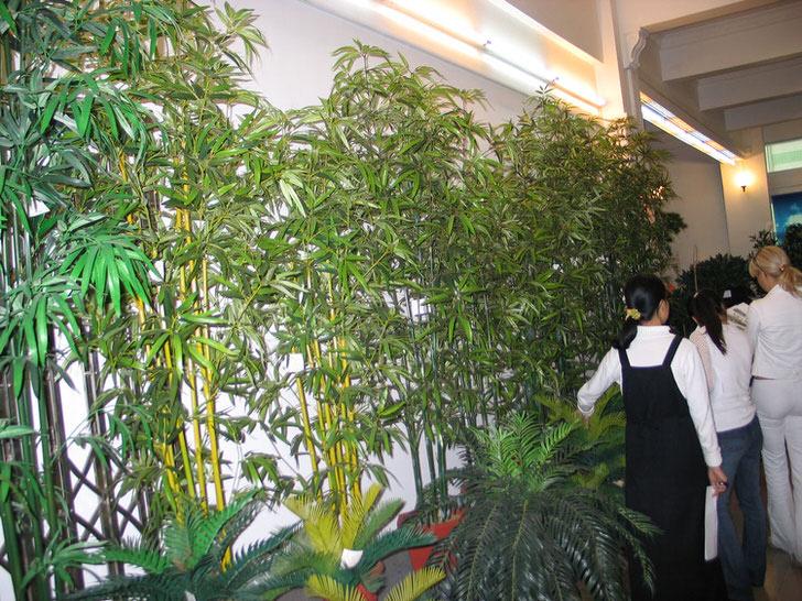 Оригинальная изгородь из побегов бамбука.