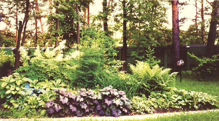 Ближнее Подмосковье, столетнии ели, загородный посёлок, альпийская горка в тенистом месте заботливо ухоженная садоводом. Найдите знакомые растения.